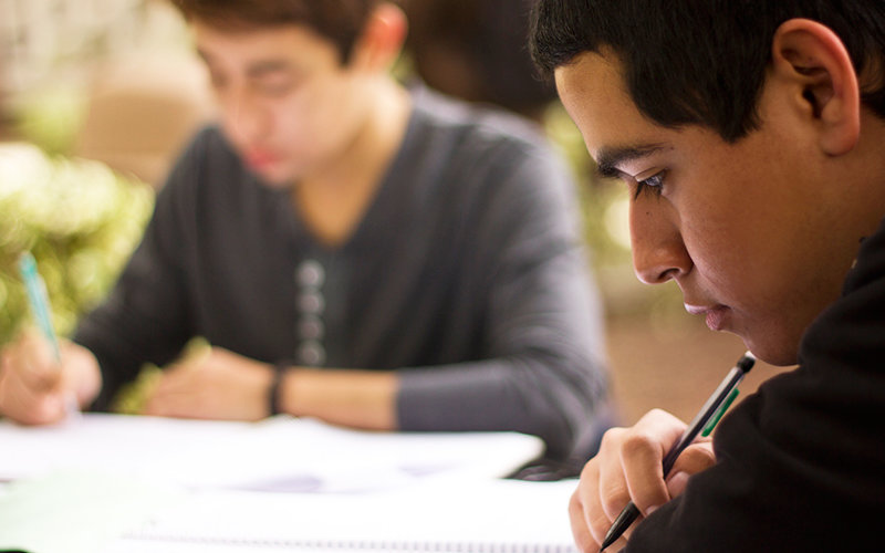 Students studying at table