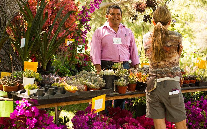 Arboretum Plant Sale