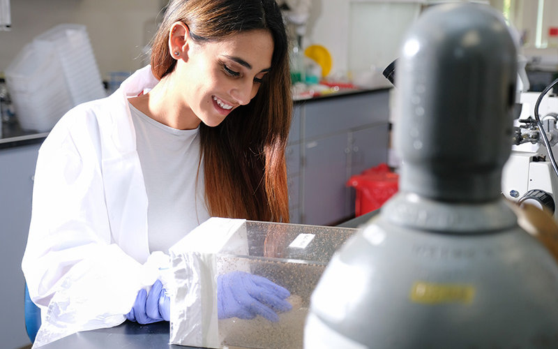 Michelle Baez in lab