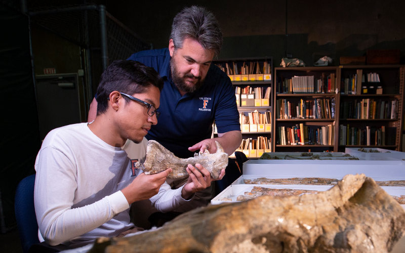 Isaac Magallanes and Jim Parham work on fossils/