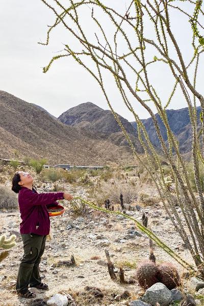 Jennifer Ibarra conducting desert noise pollution study.