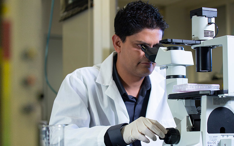 Nilay Patel working in CSUF Labratory.