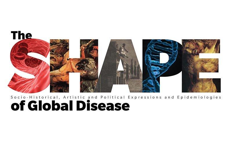 The SHAPE of Global Disease