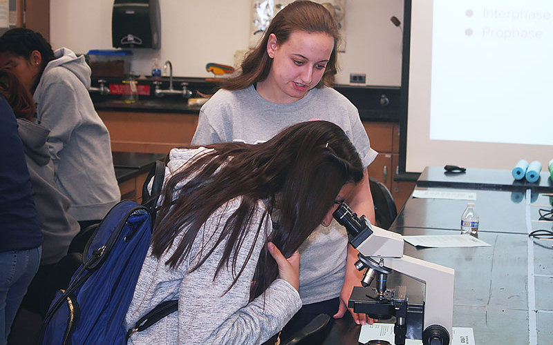 Students looking at microscope
