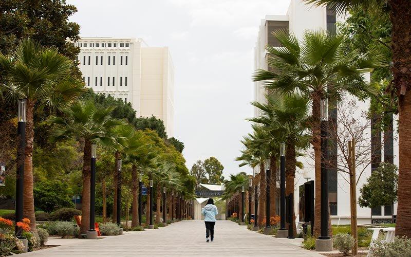Student walks down empty promendade