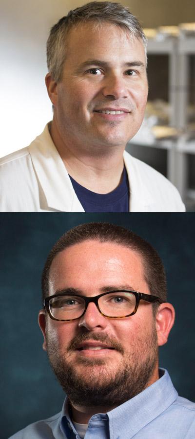Matthew Kirby and Joe Carlin
