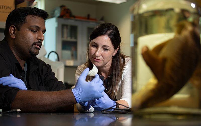Misty Paig-Tran and student Raj inl lab