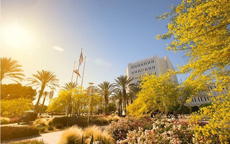 CSUF Campus