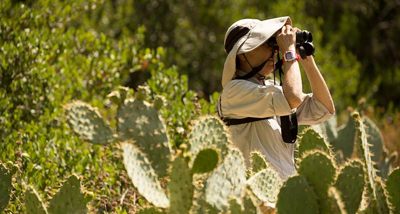 Bird watcher in Tucker Wildlife