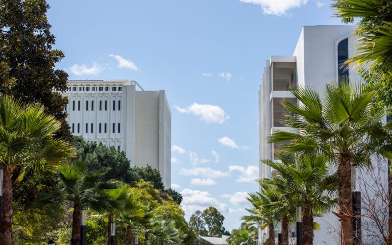Campus promenade