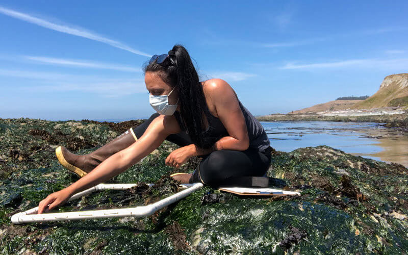 Angelina Zuelow conducting Ocean Fieldwork