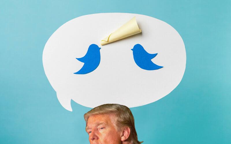 Trump Illustration with Social Media, Trump Photo Courtesy Matt A.J