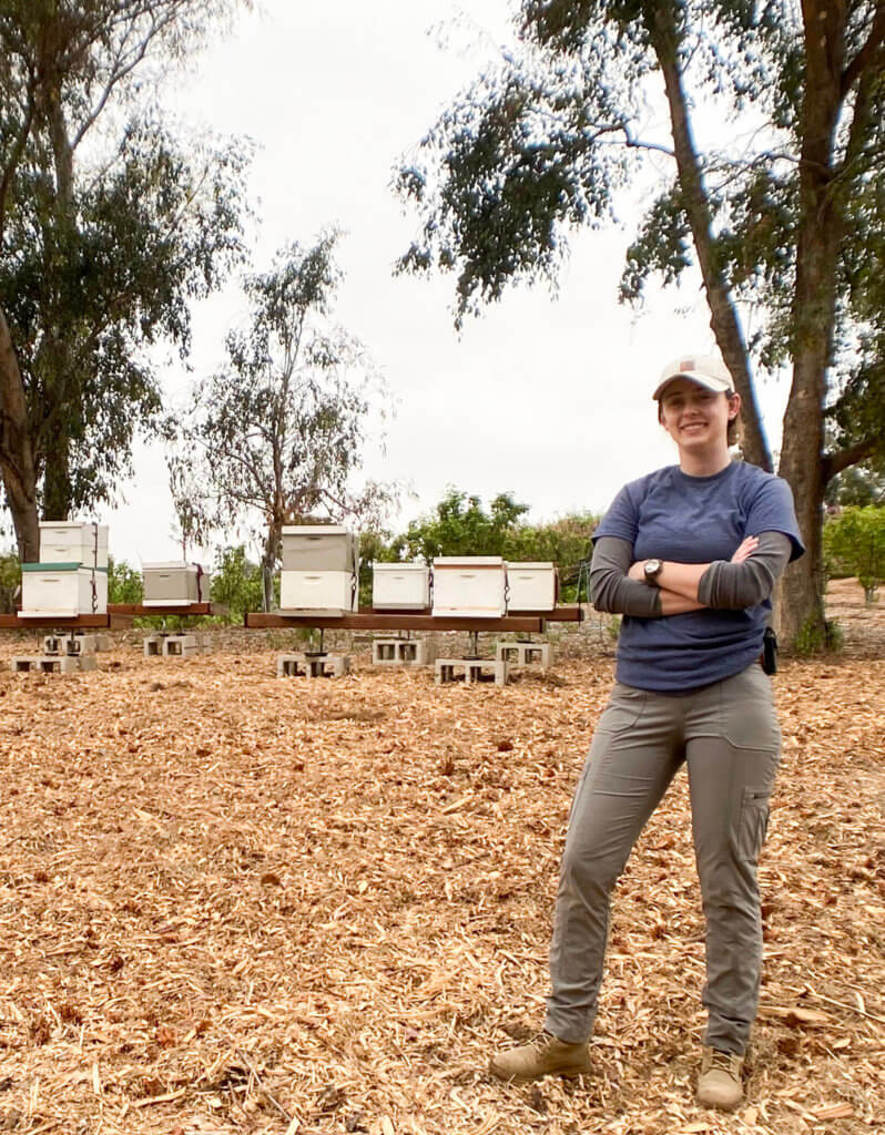 Cailin Bee reseacher in field with bee colonies