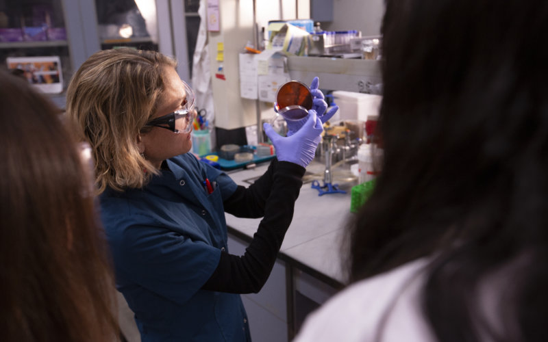 Maria Soledad Ramirez working in laboratory